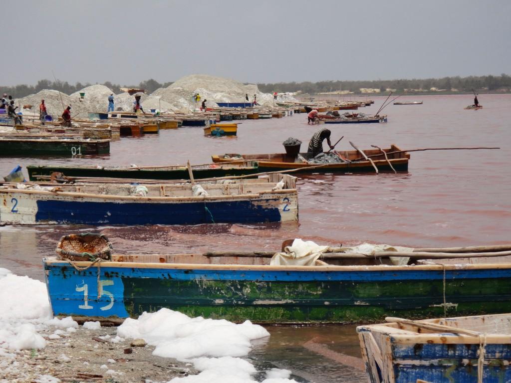 25_Senegal