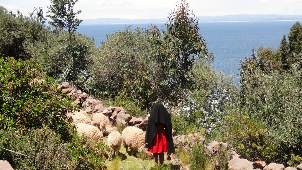 50_Titicaca