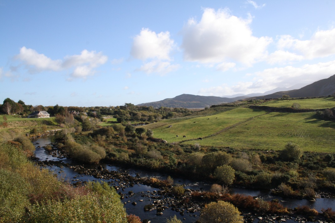 46_ring_kerry